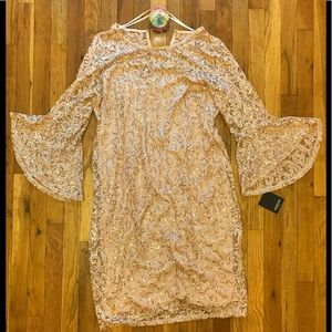Marina dress plus size lace bell sleeve 🍑 color